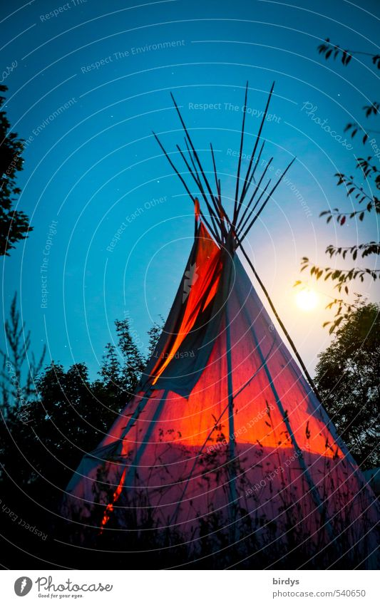 My home is my Tipi Camping Tee Pee Nature Cloudless sky Night sky Full  moon Summer Branch Illuminate Esthetic Exceptional Exotic Positive Warmth Wild