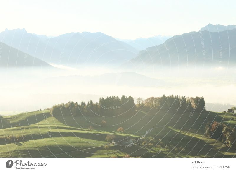 Sky Nature Plant Sun Tree Landscape Calm Forest Meadow Autumn Grass Rock Field Fog Beautiful weather Elements