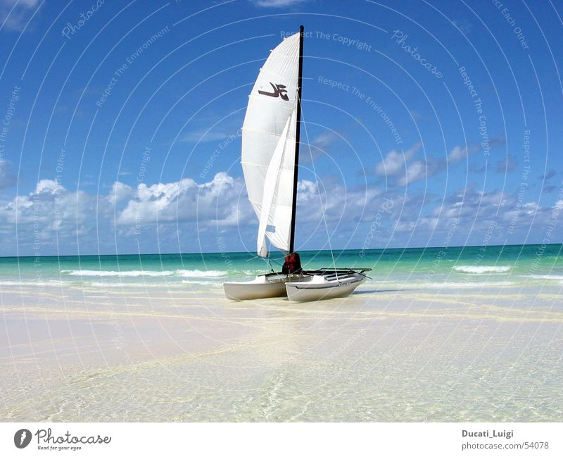 Sun Ocean Beach Vacation & Travel Relaxation Freedom Sand Island Swimming & Bathing Sailing Cuba Beautiful weather Blue sky Catamaran