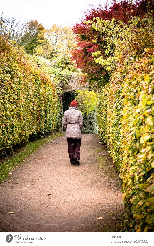 forwards Human being Feminine Woman Adults 1 Park Going Hedge Autumnal Autumnal colours To go for a walk Lanes & trails Gate Colour photo Exterior shot