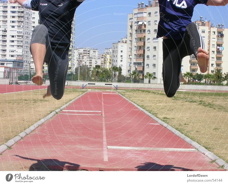 the jump Jump Summer Track and Field Sports Sports Training