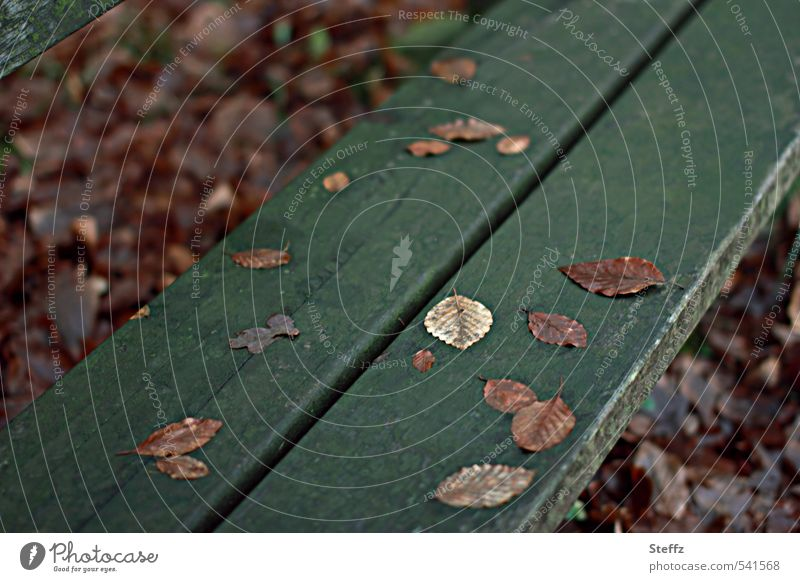 Brown autumn leaves on a dark green wooden bench in November November picture Autumn Melancholy november melancholy melancholically nostalgically