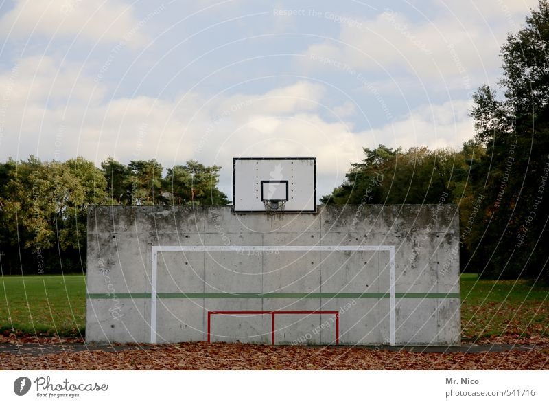 Sky Nature Tree Clouds Leaf Environment Wall (building) Meadow Autumn Sports Wall (barrier) Playing Line Lifestyle Beautiful weather Soccer