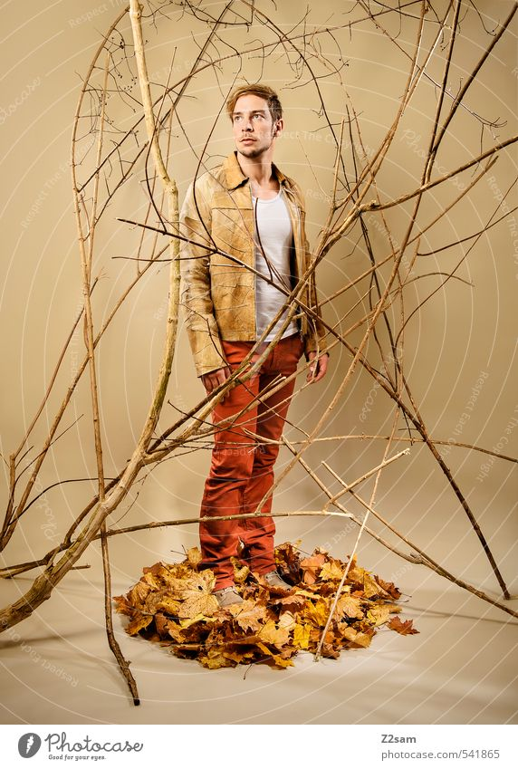 Case 2013 Lifestyle Elegant Style Masculine Young man Youth (Young adults) Human being 18 - 30 years Adults Autumn Bushes Branch Leaf Autumn leaves Fashion