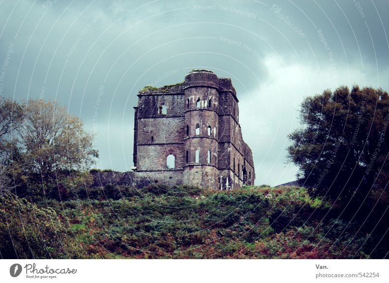 Sky Nature Old Plant Tree Clouds House (Residential Structure) Dark Autumn Facade Bushes Hill Ruin Ireland