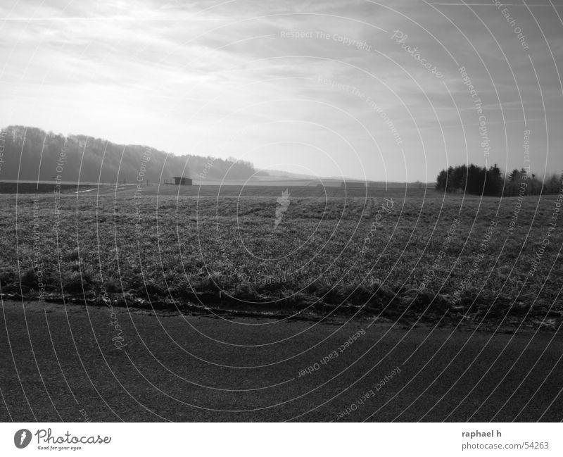 Sky Far-off places Meadow Landscape Field Fog Horizon Barn