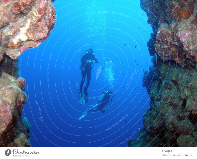 Ocean Blue Dive Air bubble Diver Egypt Underwater photo Dahab Red Sea