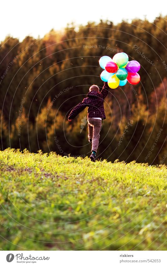 Human being Child Joy Forest Environment Life Meadow Autumn Boy (child) Happy Natural Jump Flying Masculine Field Infancy