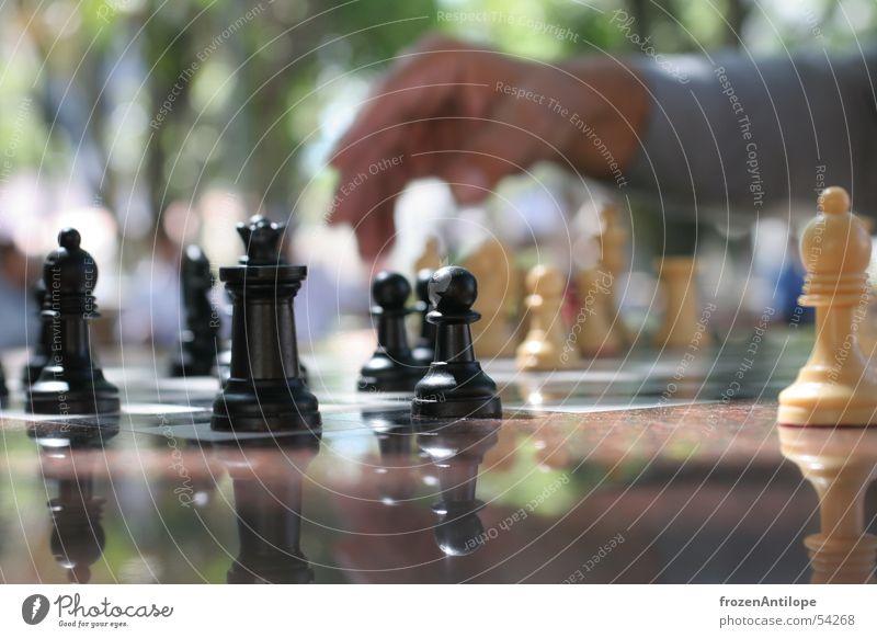 Hand White Sun Black Places Chessboard Santa Cruz