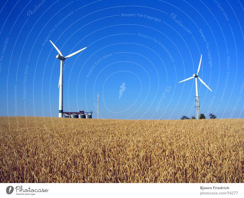 wind turbines Agriculture Wind energy plant Silo Telegraph pole Ear of corn Summer White Yellow Energy industry Nature Power Americas Gastronomy Grain Sky