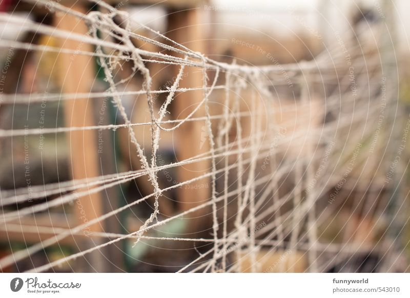 Freedom Line Fear Poverty Dangerous Rope Threat Broken Simple String Safety Protection Firm Fence Attachment Irritation