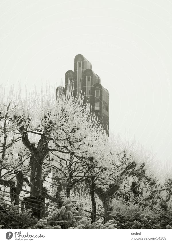 Sky Tree Winter Calm Clouds Loneliness Cold Gray Sadness Wall (barrier) Park Ice Art Gloomy Frost Tower