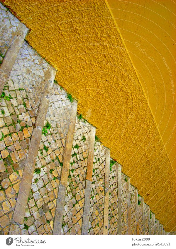 dna lisboa Portugal Old town Wall (barrier) Wall (building) Stairs Pedestrian Lanes & trails Stone Bright Historic Yellow Happiness Life Infinity Target
