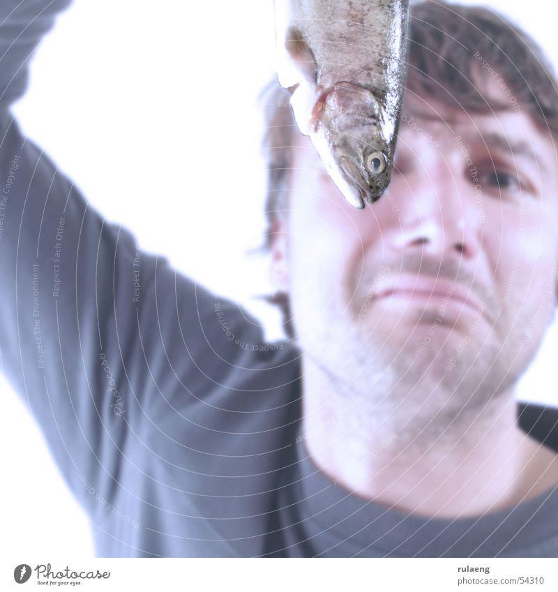 Man Glittering Food Fish Square Odor Unshaven Uphold Malodorous