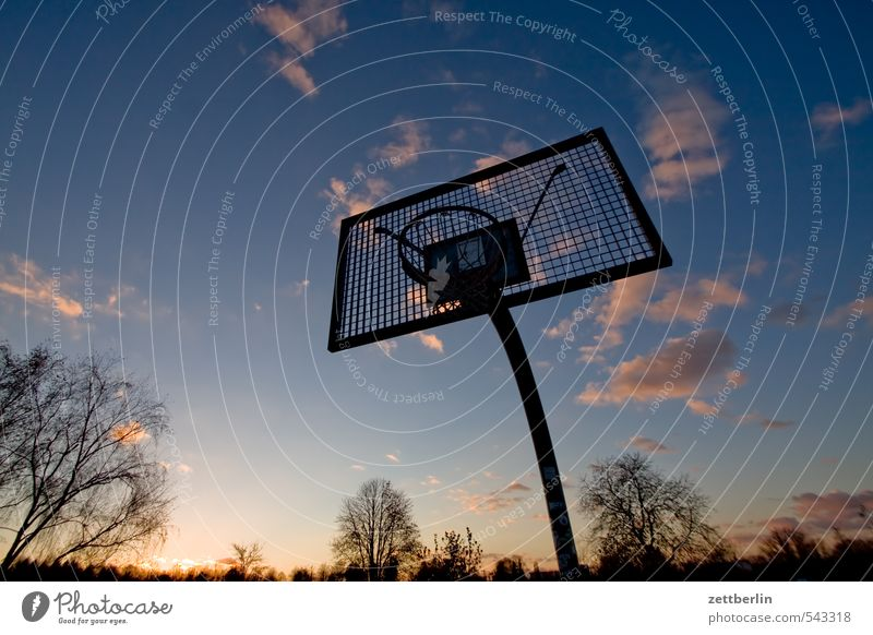basketball Evening Twilight Far-off places Sky Horizon Sun Sunset Clouds Playing Sports Basketball Ball sports Closing time Effortless Descent Go up