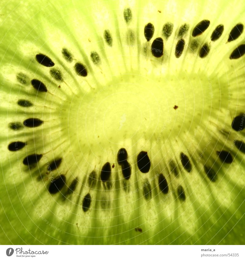 kiwi Kiwifruit Kernels & Pits & Stones Green Black Light Fruity Delicious Healthy Vitamin Juicy conducted through Lamp Bowl Cross-section Close-up