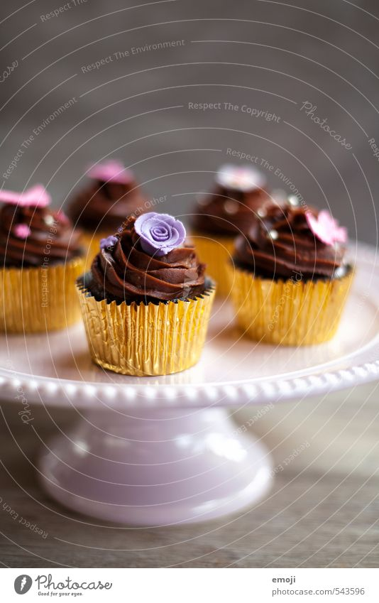 chocolate Cake Candy Chocolate Nutrition Slow food Finger food Delicious Sweet Cupcake Rich in calories Colour photo Interior shot Deserted Copy Space top