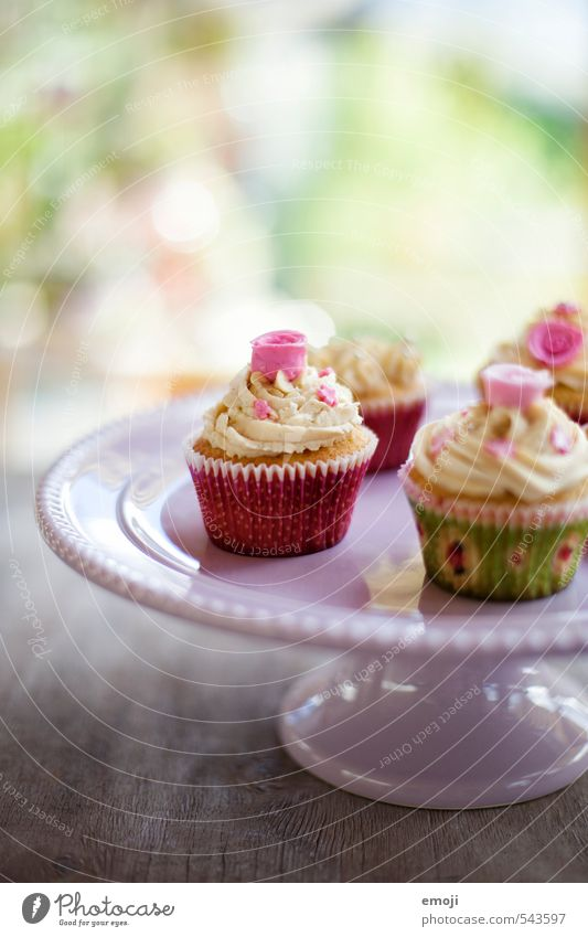 rosy Cake Dessert Candy Nutrition Picnic Slow food Finger food Delicious Sweet Pink Cupcake Colour photo Interior shot Close-up Deserted Day