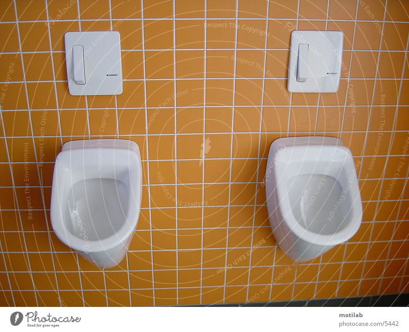 Toilet Things Urinal