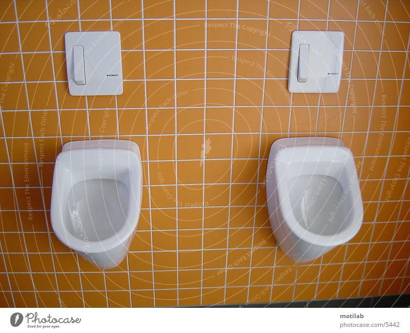 urinal Urinal Things Toilet