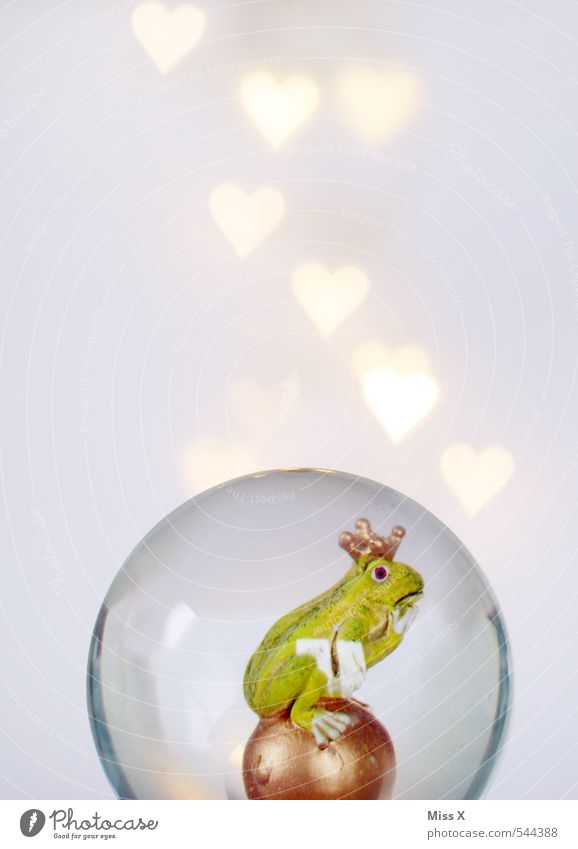 Animal Love Emotions Moody Illuminate Heart Romance Infatuation Sphere Kissing Frog Fairy tale Valentine's Day Crown Slimy Predict