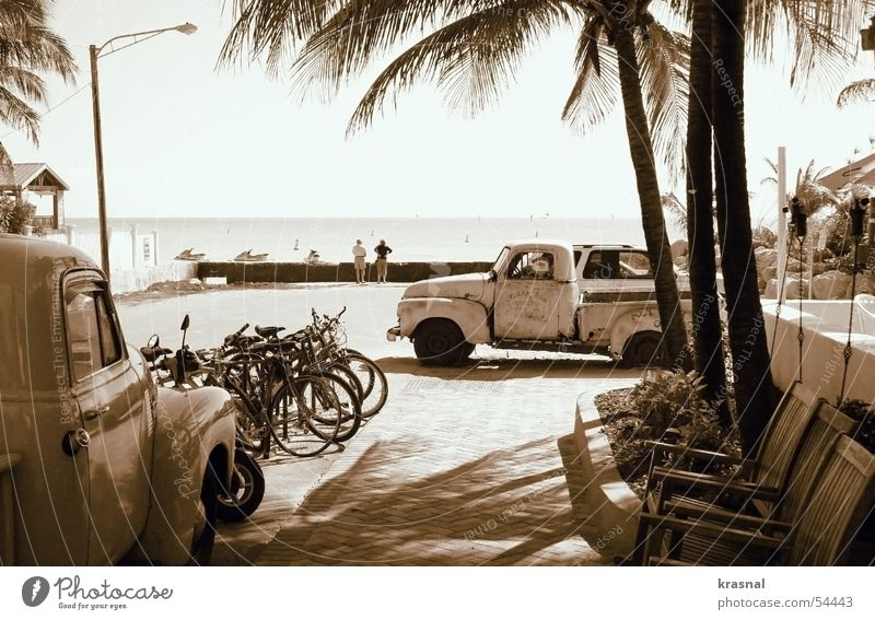 key west beach Retro Beach old car Sepia Palm tree tranquility bicycles chairs calm ocean