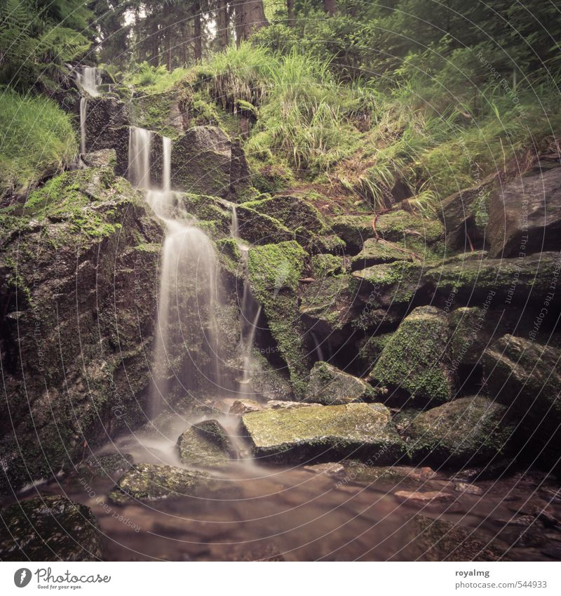 Hydropower II Summer Summer vacation Mountain Environment Nature Plant Animal Water Pond Brook River Waterfall Growth Esthetic Contentment Wellness Colour photo