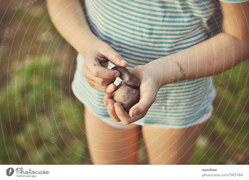 projectiles Androgynous Girl Boy (child) Child Infancy Arm Hand Fingers Parenting 8 - 13 years Environment Nature Summer Beautiful weather Grass Bushes Stone