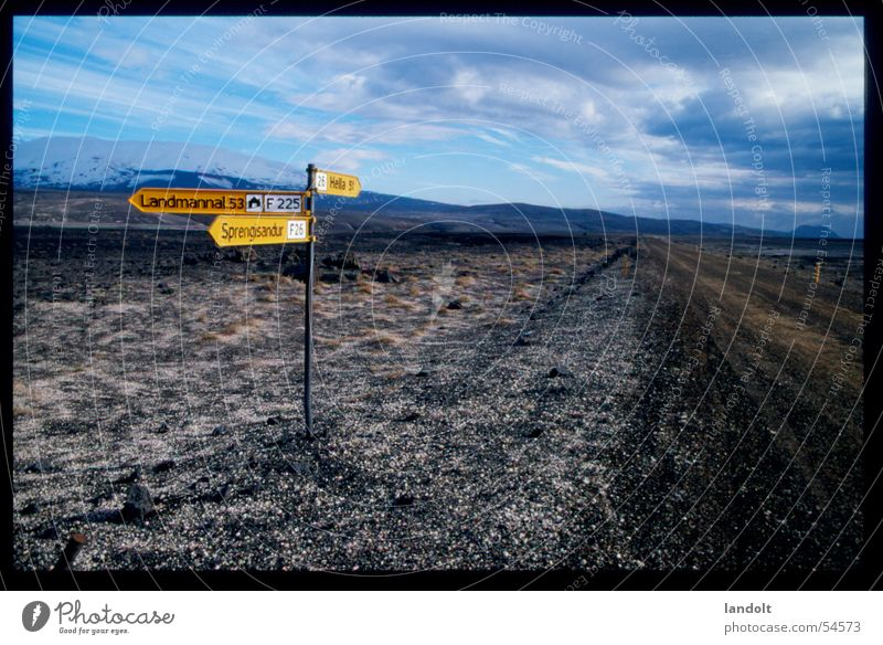 Vacation & Travel Yellow Far-off places Street Ask Lanes & trails Horizon Empty Island Longing Arrow Iceland Road marking Street sign Where Whereto