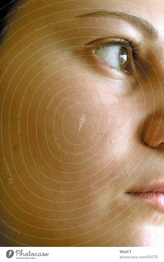 Woman Face Eyes Mouth Skin Nose Lady Cheek Eyelash Eyebrow Pupil