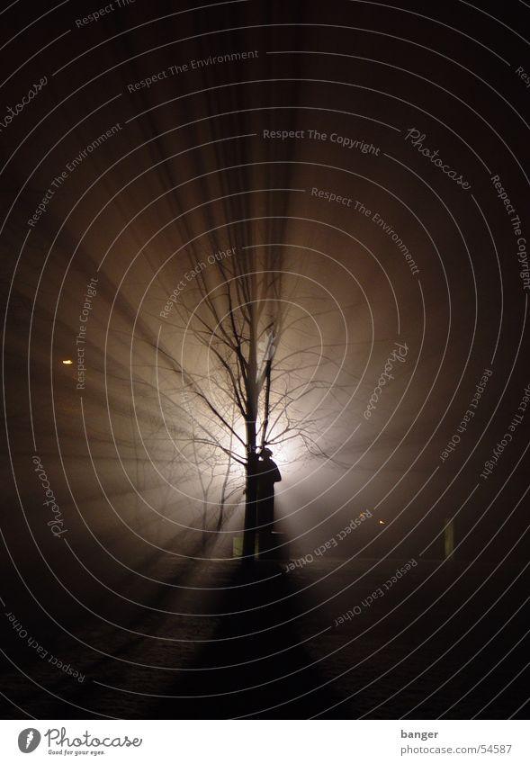 Clara in Zetkin Park in the headwind Night Back-light Tree Monument Cinema Fog Light (Natural Phenomenon) clara zetkin Snow