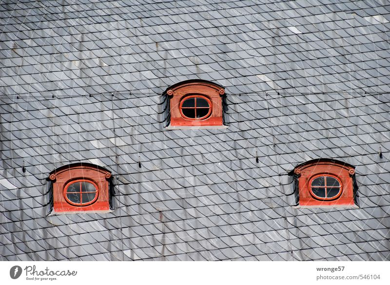 Three eyes quedlinburg Germany Saxony-Anhalt Europe Small Town Downtown Old town Deserted House (Residential Structure) Half-timbered house Window Roof Dormer