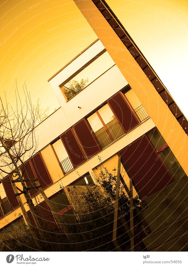 Human being Sky Tree Red House (Residential Structure) Window Architecture Graffiti Building Wall (barrier) Brown Line Bright Facade Flat (apartment) Orange