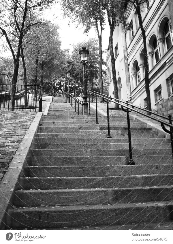 Neverending Steps Steep Lamp Street lighting Ancient Tree Autumn Paris Quarter Sacré-Coeur Leaf House (Residential Structure) Loneliness Exterior shot Stairs