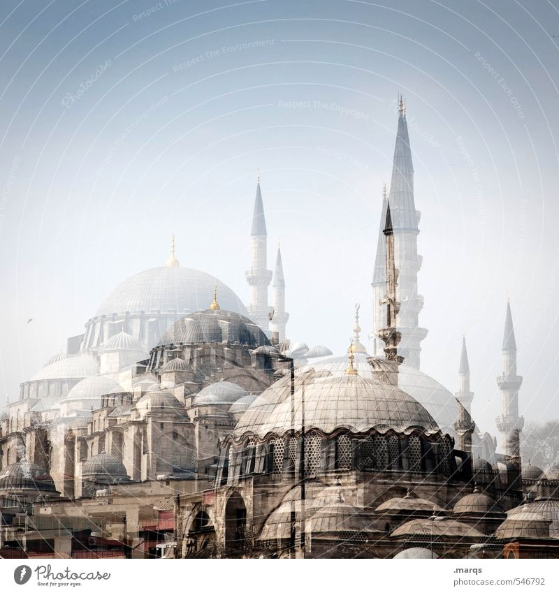 Istanbul Vacation & Travel Tourism Sightseeing City trip Summer Cloudless sky Turkey Manmade structures Building Architecture Mosque Exceptional Bright