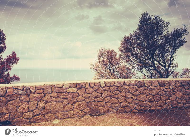 natural stone wall Vacation & Travel Summer Ocean Environment Nature Landscape Earth Sky Warmth Tree Coast Bay Wall (barrier) Wall (building) Old Uniqueness