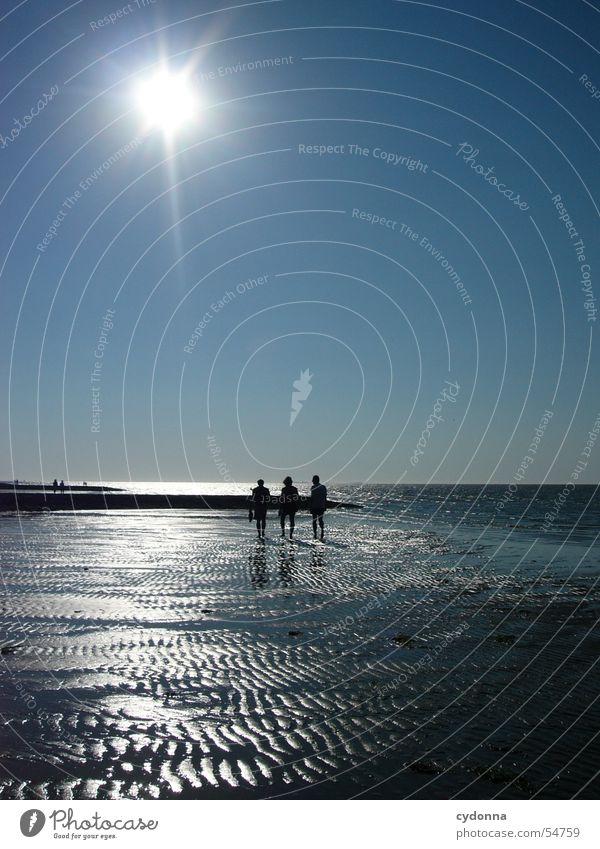 Human being Water Sky Sun Ocean Blue Summer Beach Sand Waves Trip Action To go for a walk North Sea Mud flats Low tide