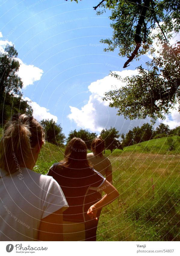 Woman Nature Sky Tree Sun Green Blue Summer Clouds Meadow Freedom Walking 3 Trip Hill