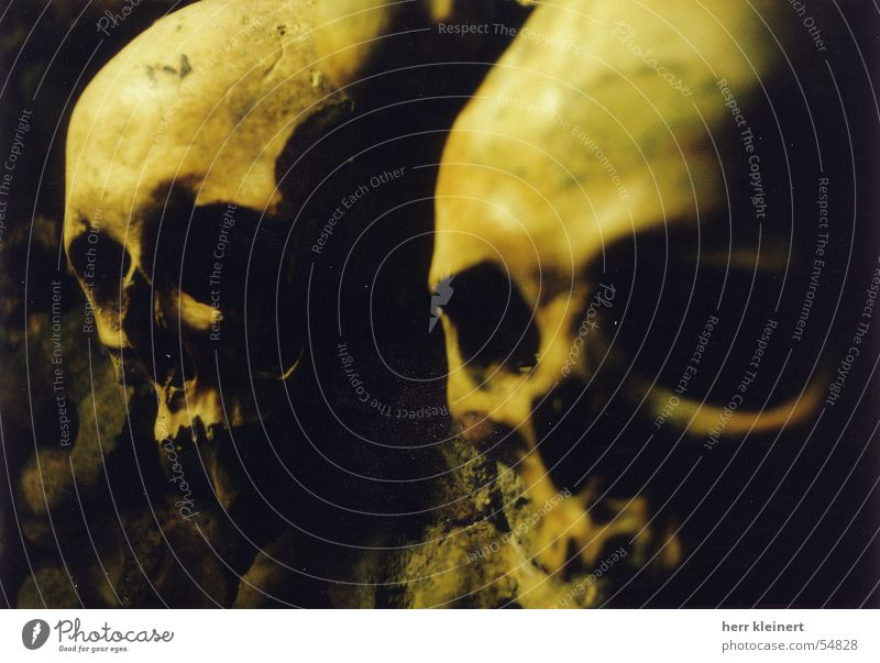 Death Creepy Paris Death's head Paddle Catacomb