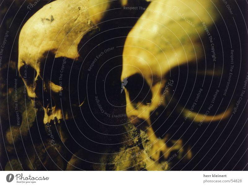 skull Paddle Paris Catacomb Creepy Death's head