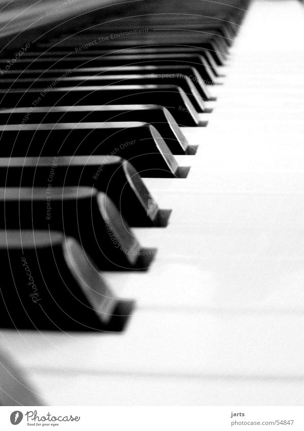 ...all piano Piano Musical instrument Media Joy Touch Musical notes Black & white photo jarts