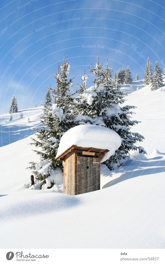 Tree Winter Cold Snow Mountain Ice Village Toilet Latrine