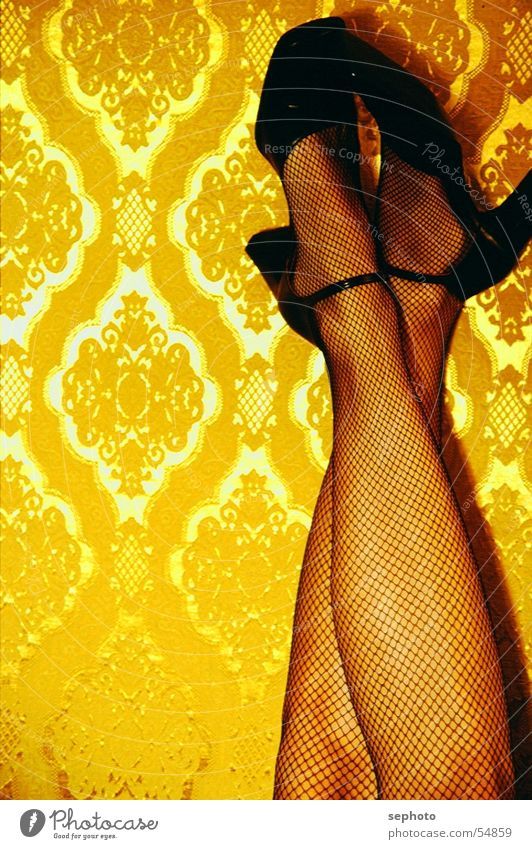 gold rush Wallpaper Pattern Long Stockings Fishnet stockings Woman The fifties Sixties Retro Relaxation Cozy Brothel Western Classical Small sausage High heels