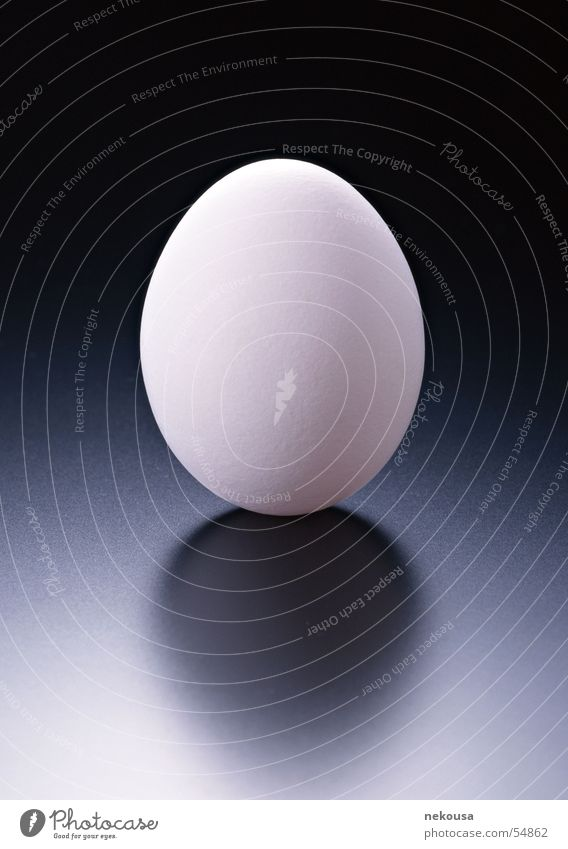 EGG graduation egg Structures and shapes background color is dark graduation indoor shooting
