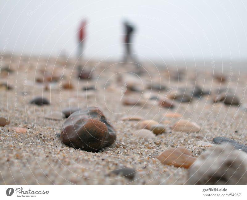 Human being Ocean Winter Beach Stone Couple Sand In pairs Multiple Near Deep