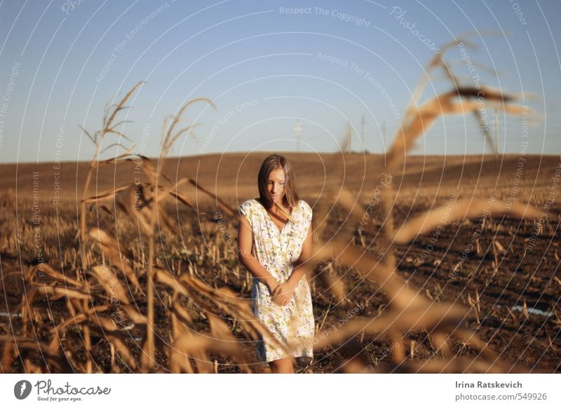 beautiful girl on the autumn field Sky Nature Youth (Young adults) Beautiful Hand Young woman Landscape 18 - 30 years Face Adults Cold Sadness Autumn