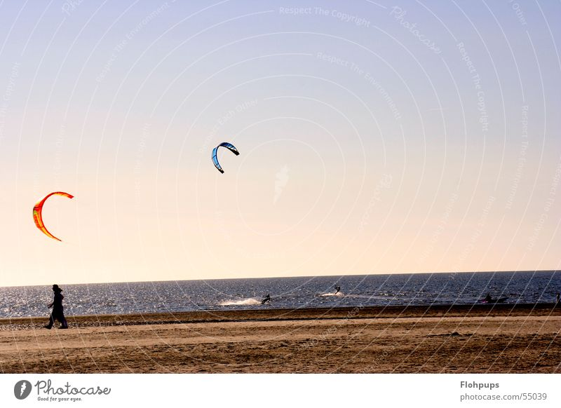 kiters Beach Kiter Kiting St. Peter-Ording Ocean Sand To go for a walk