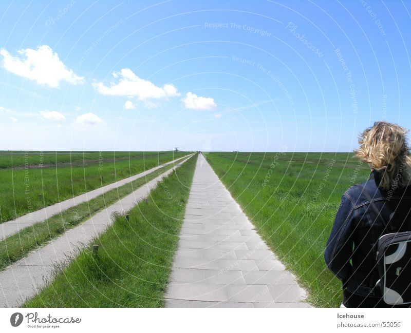 beyond the horizon it goes on... Horizon Infinity away Street Far-off places Sky paved path