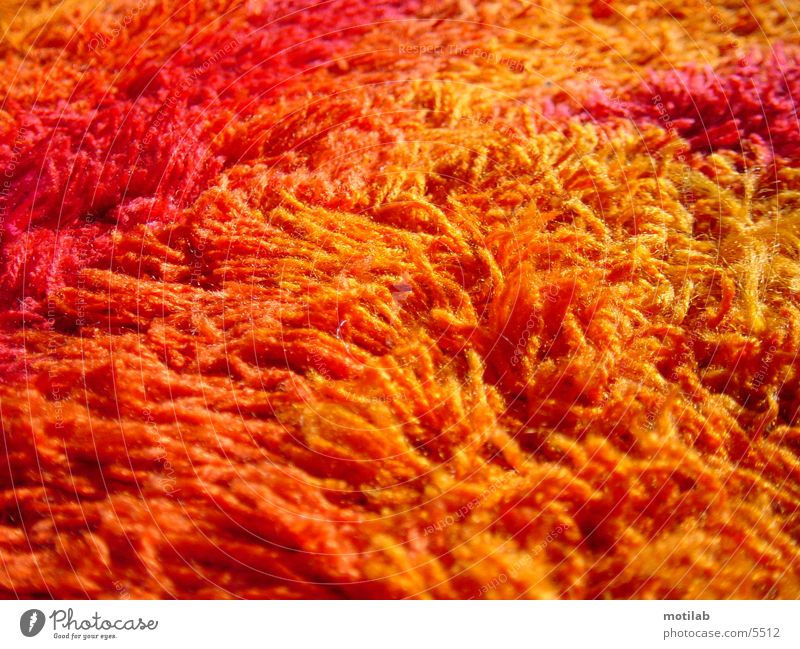 Floor covering Carpet Seventies Photographic technology Fluff
