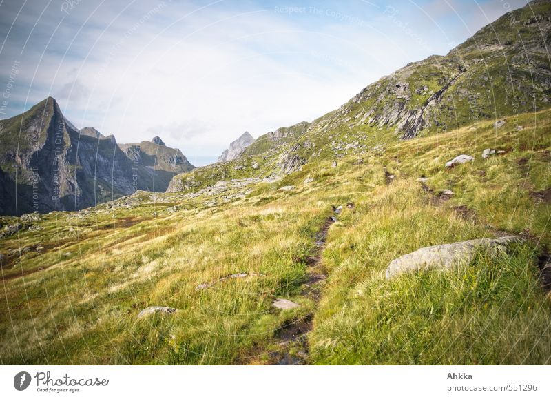 Nature Vacation & Travel Landscape Calm Far-off places Mountain Lanes & trails Grass Freedom Moody Success Authentic Hiking Perspective Esthetic Trip